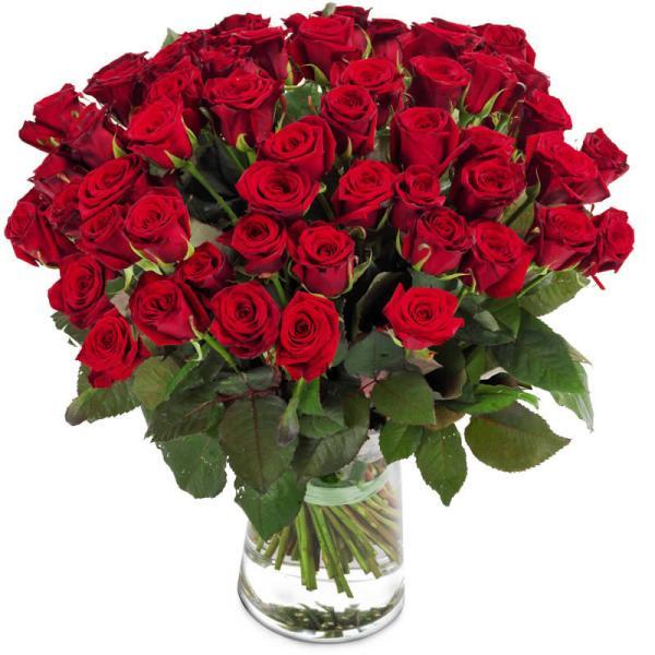 2164 - 50 Red Roses