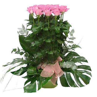 2067 - Pink Roses Arrangement
